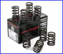 Ford 2.0 Pinto OHC RS2000 Pinto Piper Cams RACE Double Valve Springs